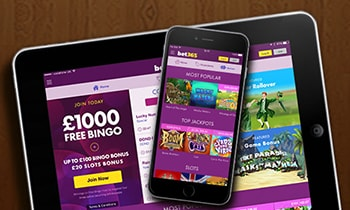 bet365 bingo software