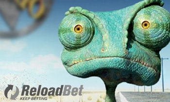 reloadbet casino support